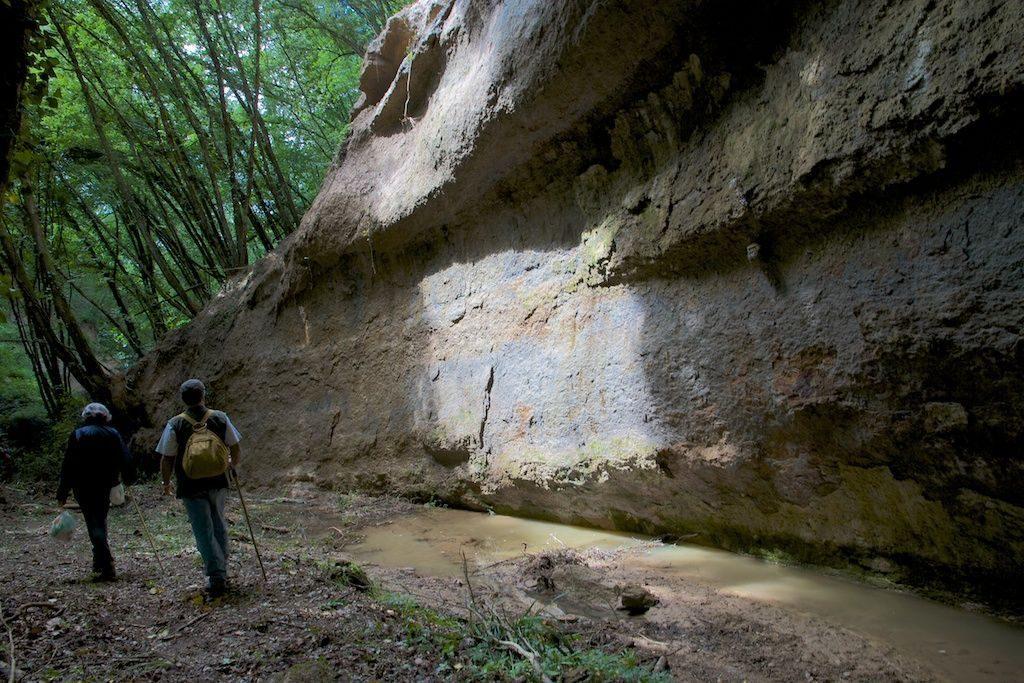 montaione-valle-torrente-carfalo-3_p_b59268444fcba5e1ec59a4430e769f42_6e482241c7e217f92e1ff36f42e7dbe3