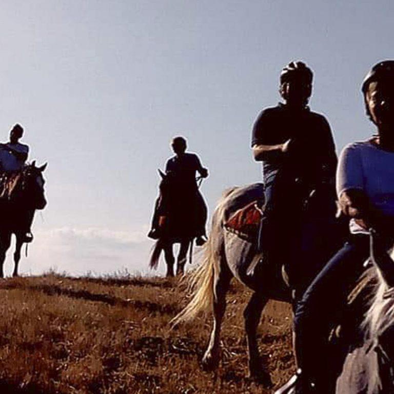 cavallo-montaione-01