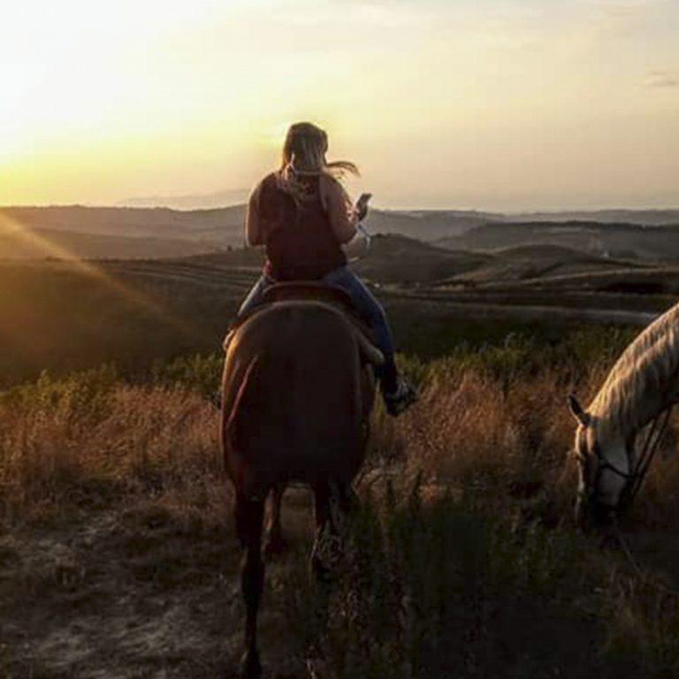 cavallo-montaione-02