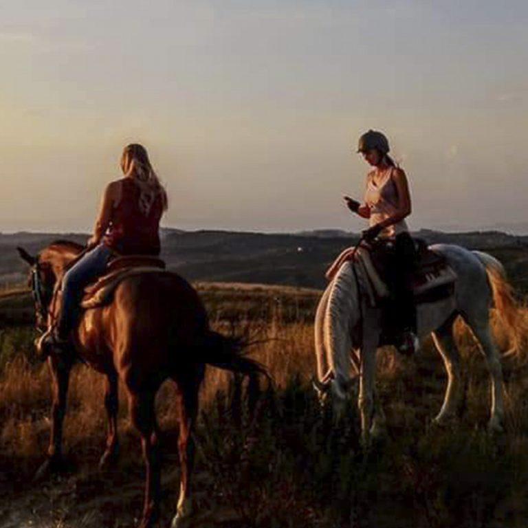cavallo-montaione-03