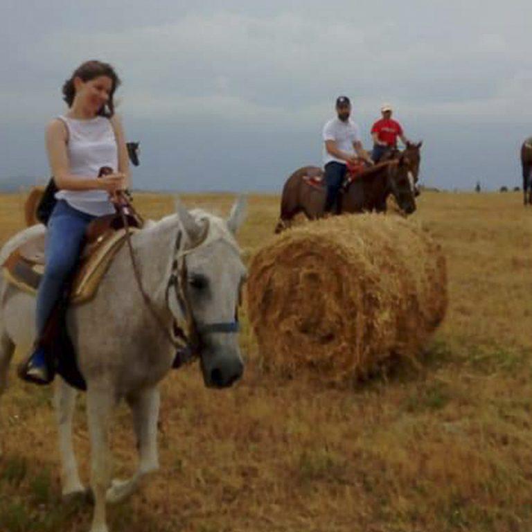 cavallo-montaione-04