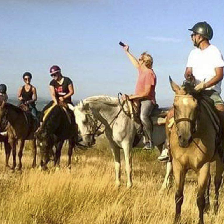cavallo-montaione-11